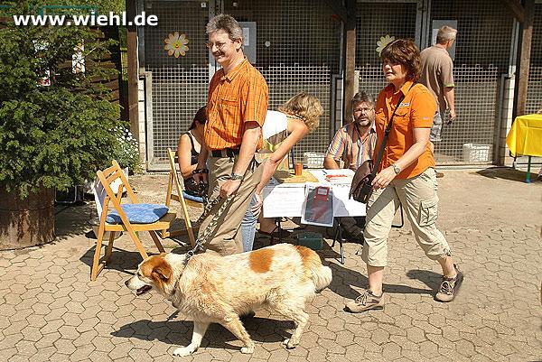 Tierheim Koppelweide